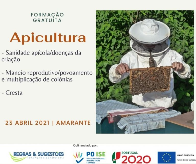 apicultura_abril